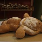 Pa de crostons